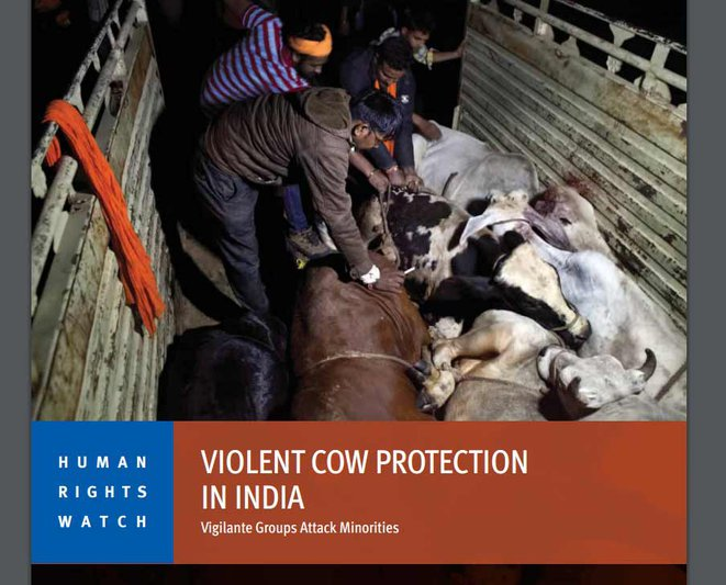 Human Rights Watch Report on Cow Violence in India